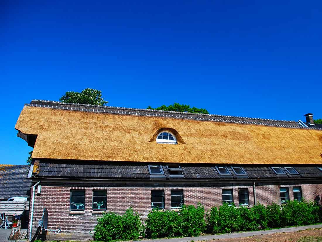 Algemeen, Rieten dak met dakkapel