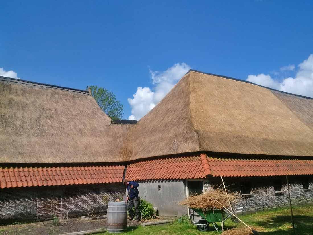 Duurzaamheid, Rieten dak na onderhoud