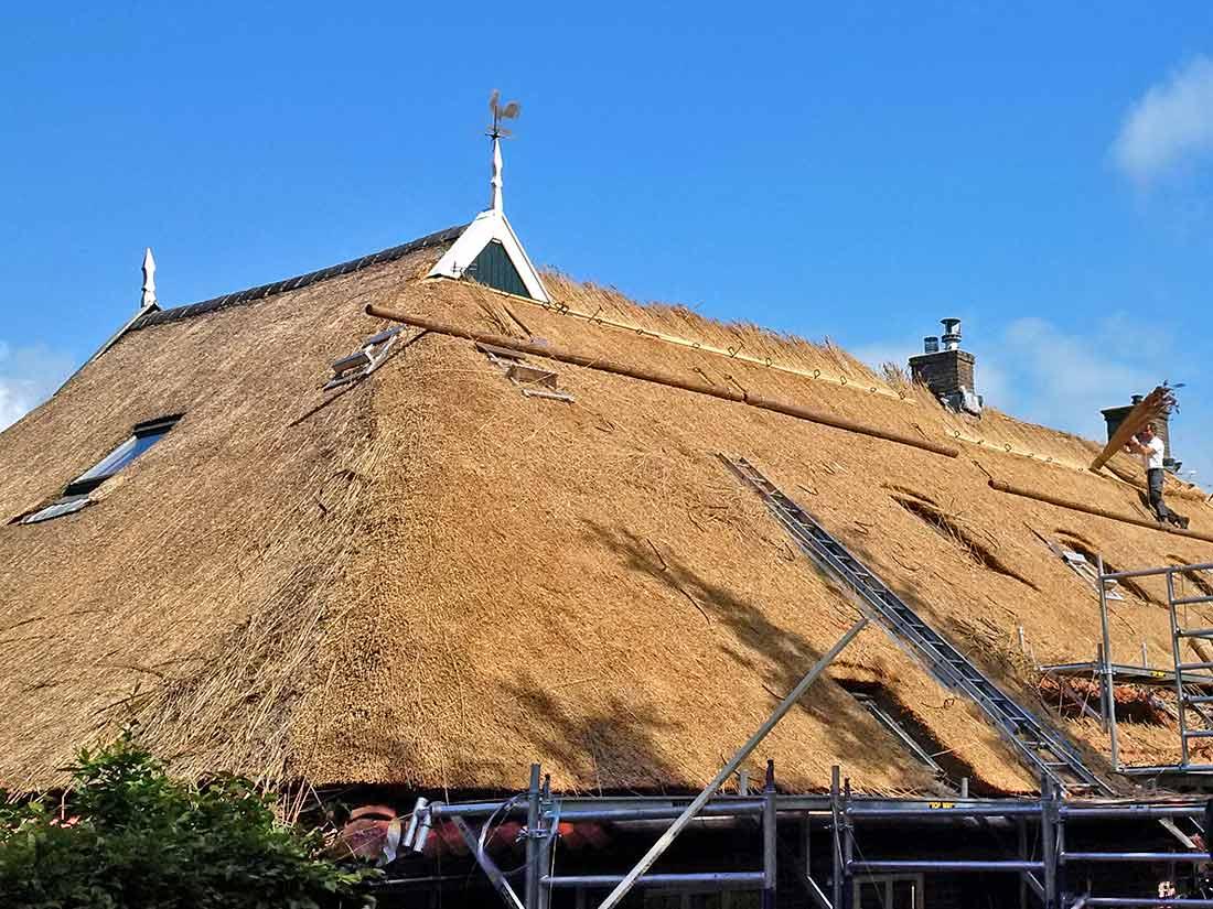 Duurzaamheid, Nieuw rieten dak