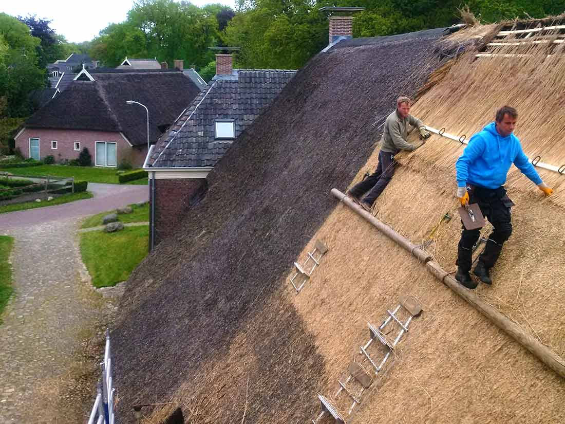 Duurzaamheid, Onderhoud rieten dak