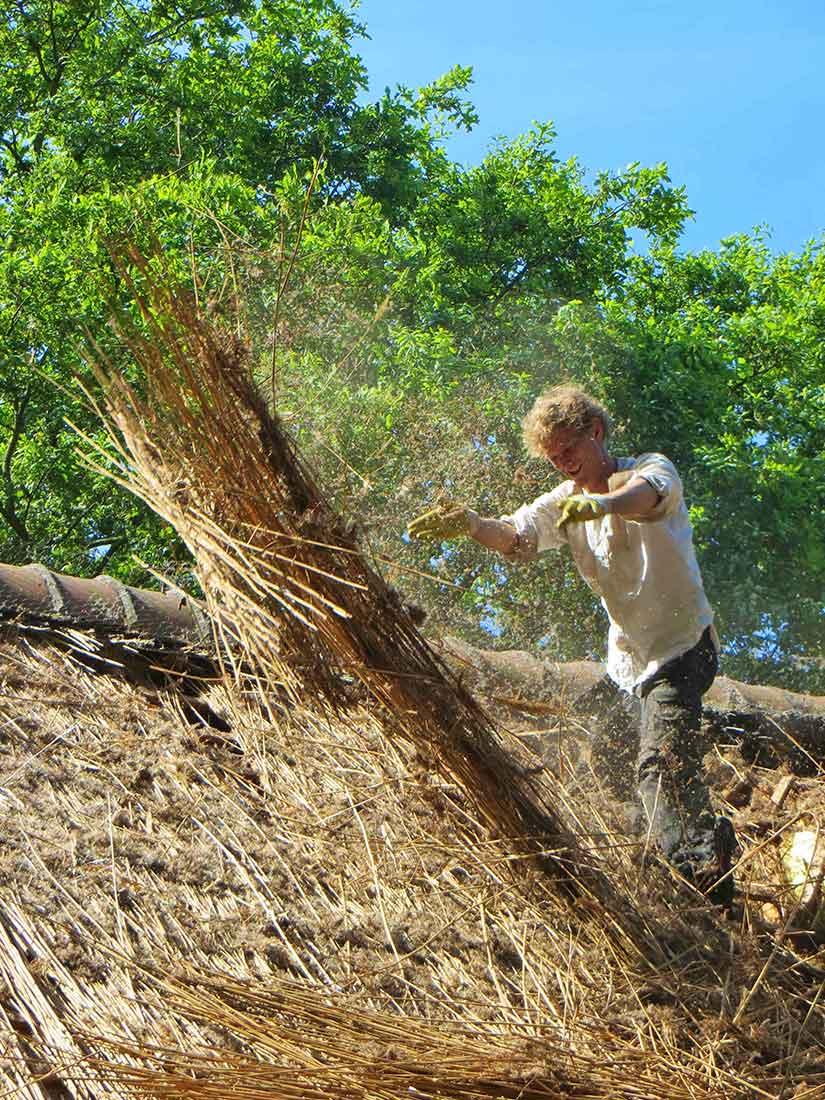 Duurzaamheid, Sloop van oud rieten dak