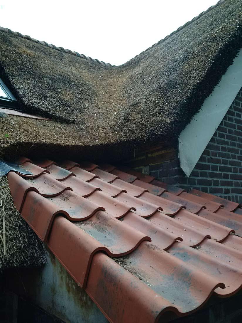 Onderhoud, onderhoud rieten dak riet na pannen
