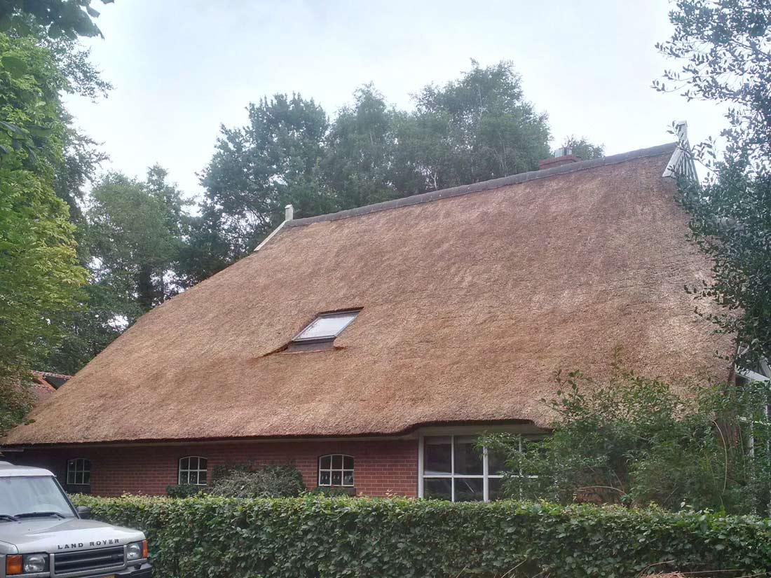 Onderhoud, Onderhoud aan een rieten dak in Paterswolde
