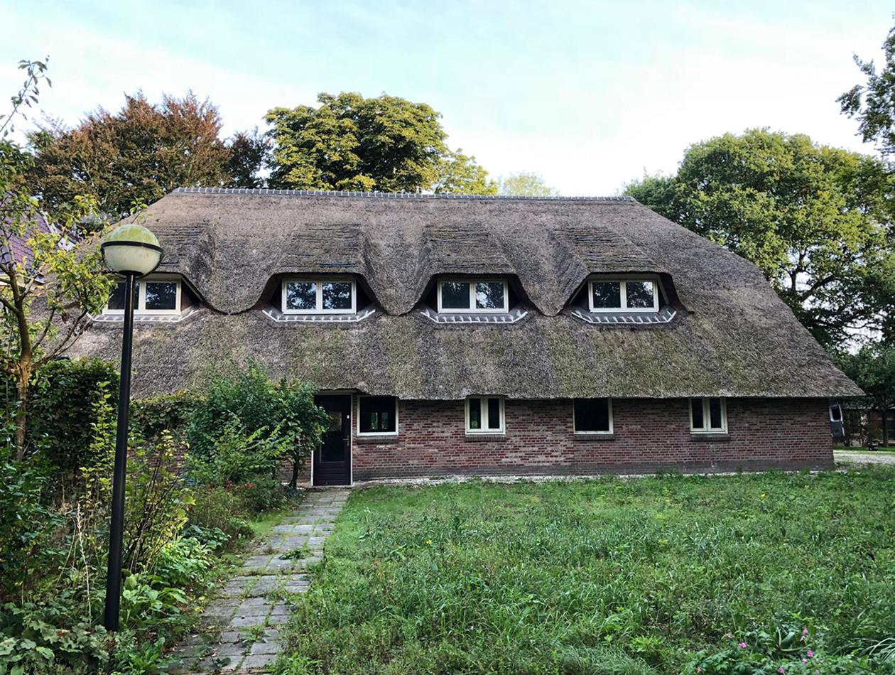 Haren  | vervangen rieten dak