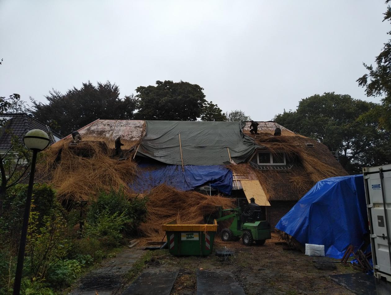 Haren  | sloop rieten dak