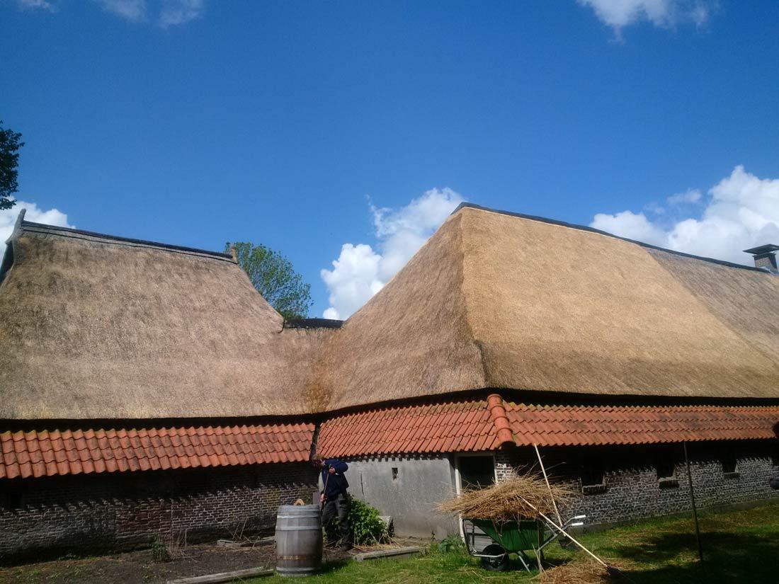 Norg - Deels vervangen rieten dak en het...