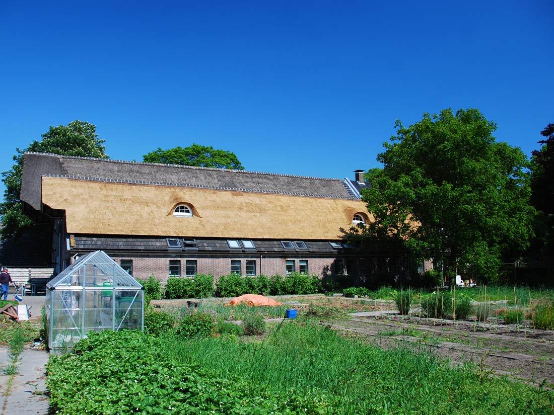Peest - Vervangen rieten dak van de zorgboerderij in Peest door de rietdekkers van rietdekkersbedrijf hofkamp.