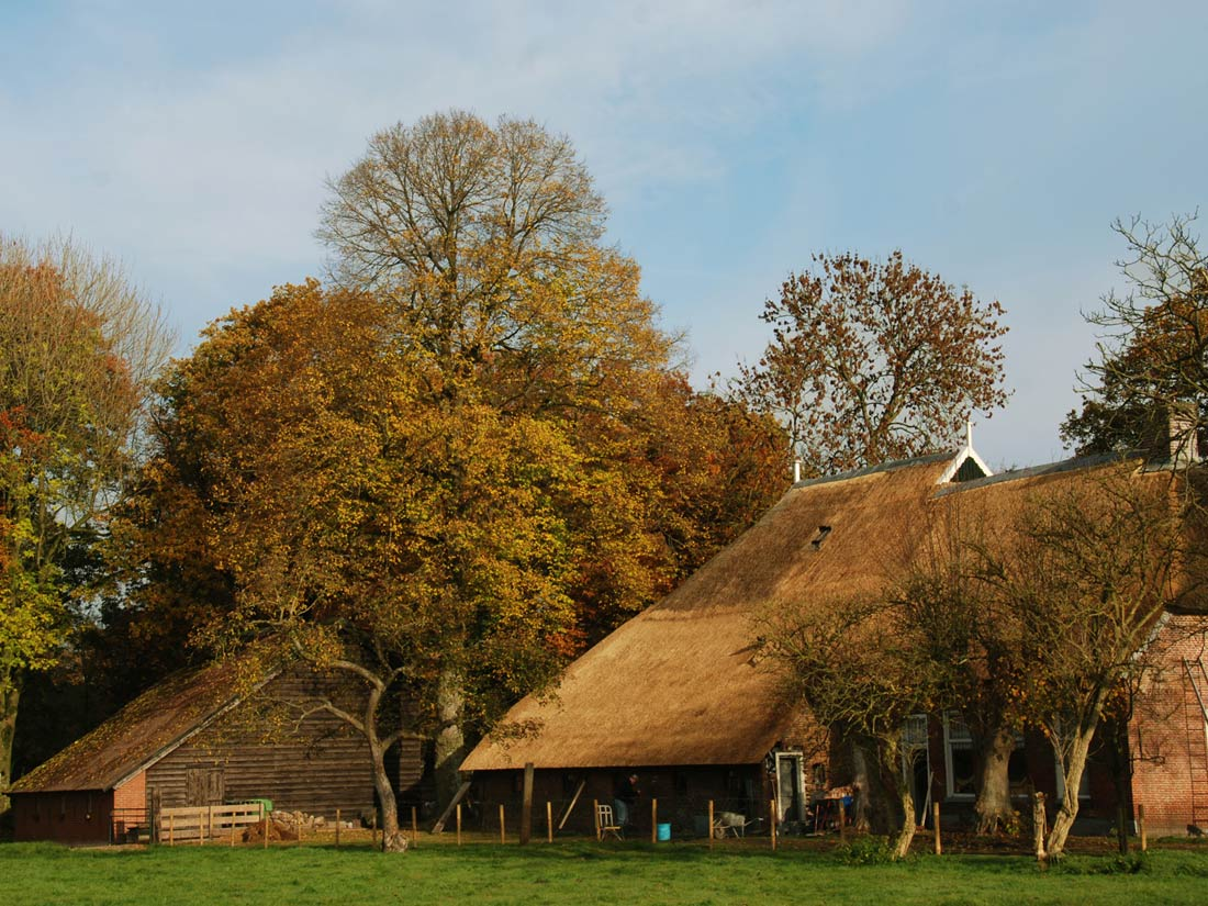 Peest - Deels vervangen rieten dak en het plegen van onderhoud aan een woonboerderij in Peest.