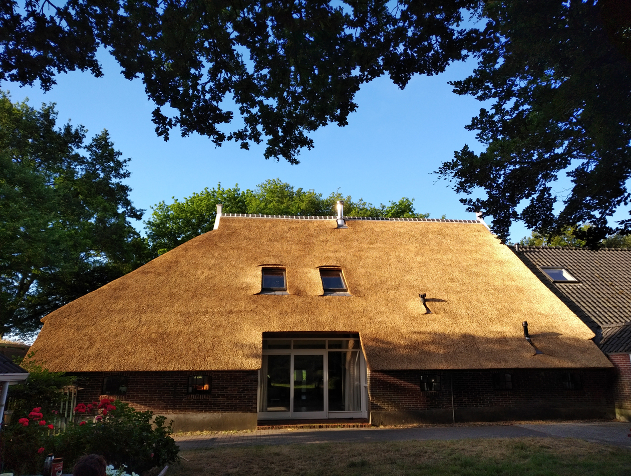 Peize - Vervangen rieten dak te Peize