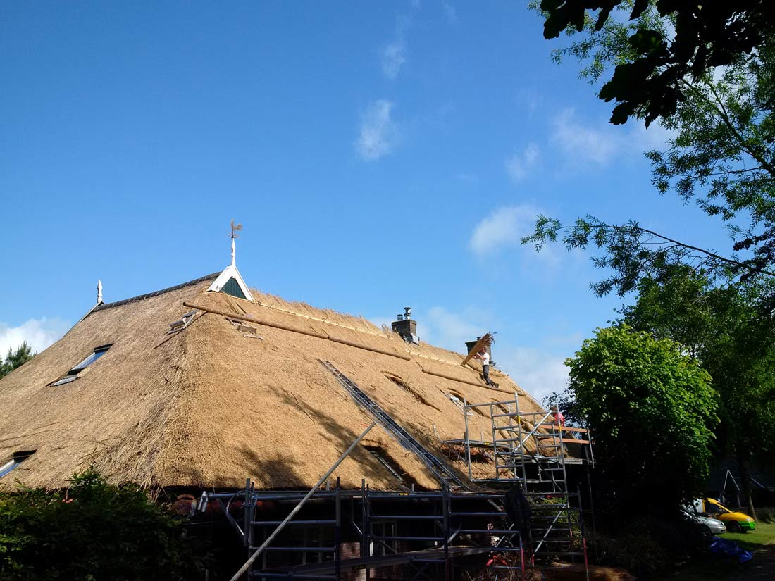 Westervelde - Vervangen en onderhoud aan rieten dak woonboerderij Westervelde
