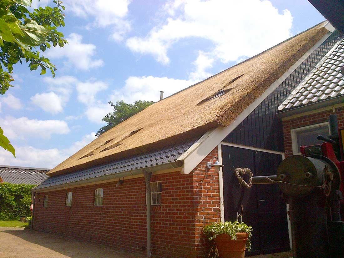 Eelde - Rieten dak