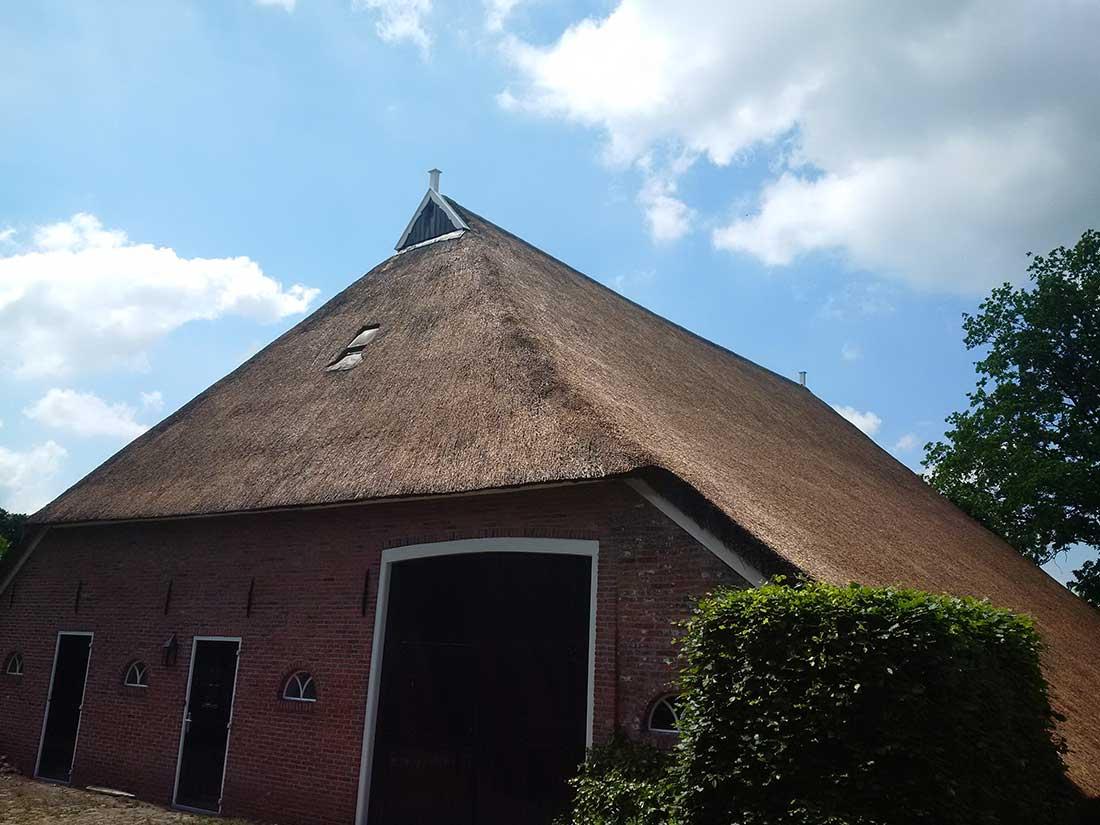 Eelde - Onderhoud aan rieten dak