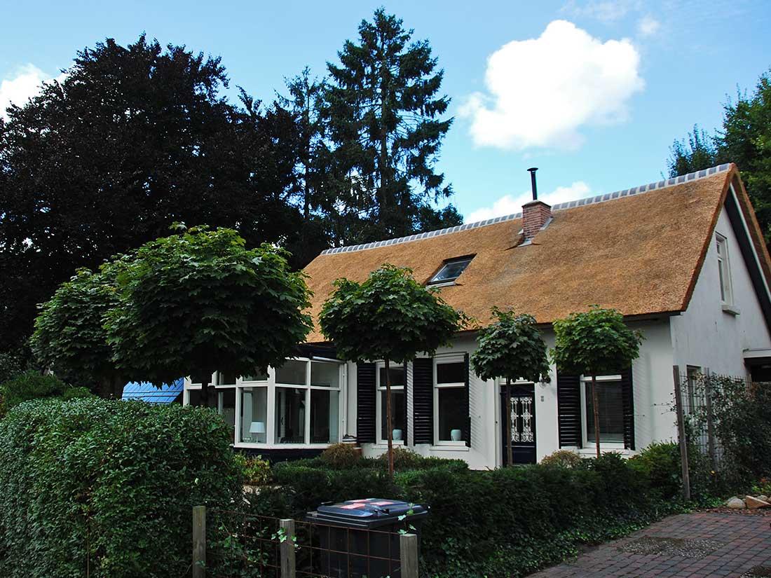 Glimmen - Vervangen rieten dak van een woning in Glimmen