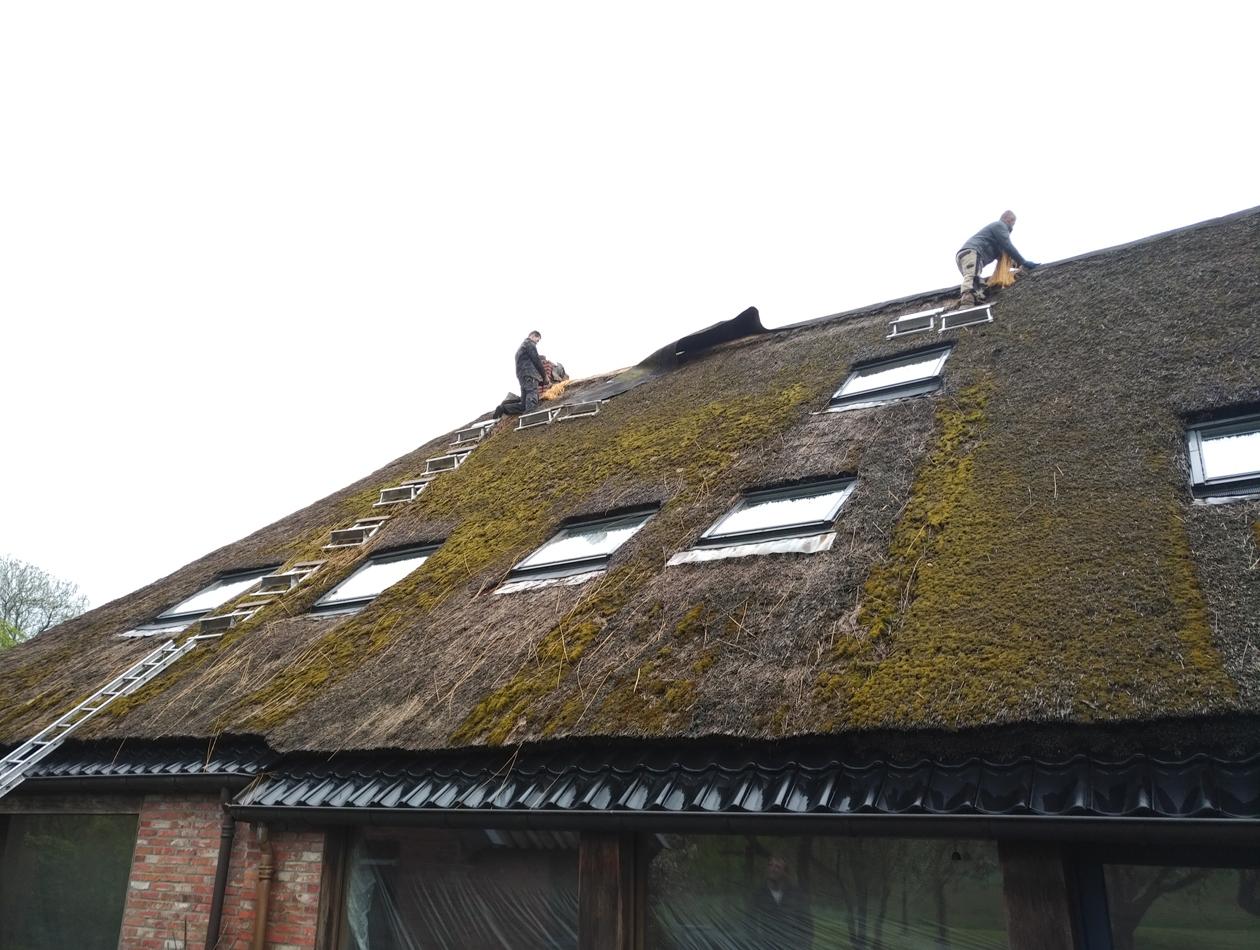 Lieveren | Sloop rieten dak rietdekkersbedrijf Hofkamp