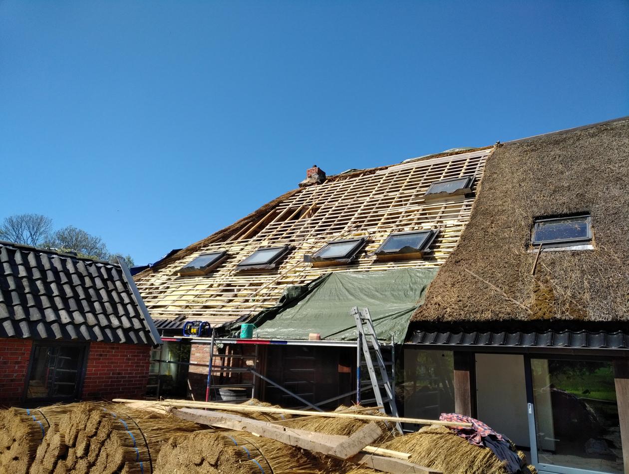 Lieveren | Vervangen sporen en panlatten rieten dak
